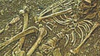 Le Musée de l'Homme de Neandertal
