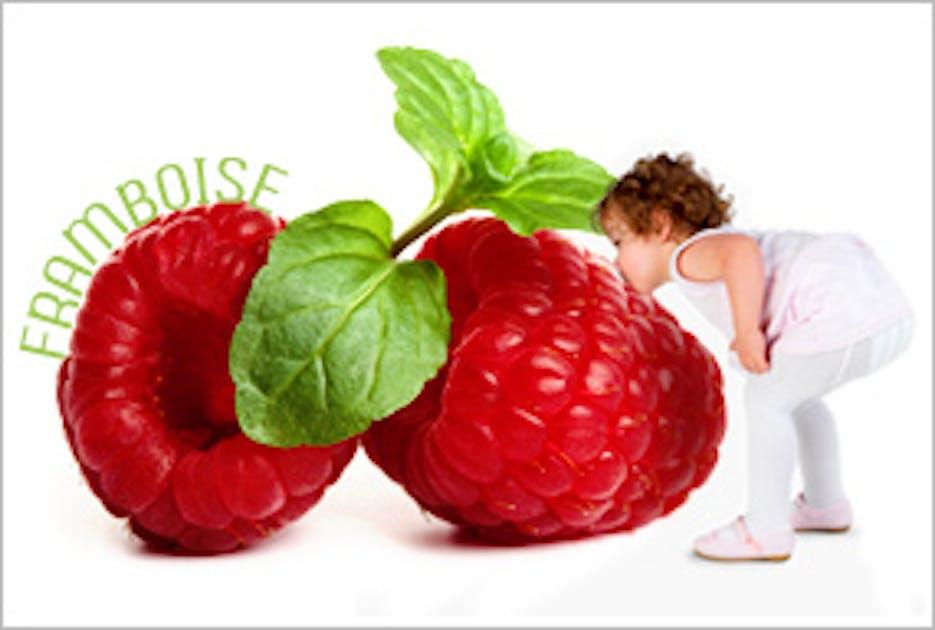 Fruit Commencant Par M En 5 Lettre - Exemple de Lettre