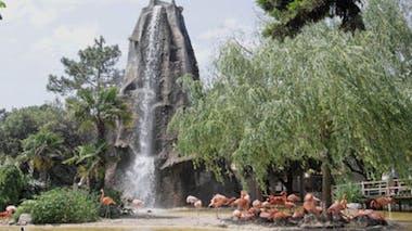 Zoo de la Palmyre (17)