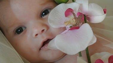 Louise (4 mois)