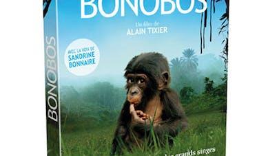 Bonobos en DVD
