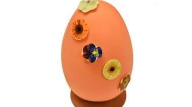 L'œuf « pensée »