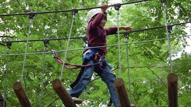 Parc Atout Branches (91, Milly-la-forêt)