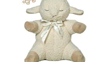 Sleep sheep on the go, Cloud B
