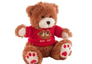 Teddy bear surveillance system