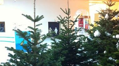 Noël au Vaisseau