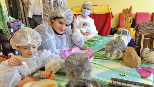 Des animaux au chevet des enfants malades