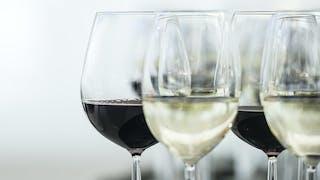 Le Syndrome d'alcoolisation fœtale