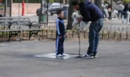 Vidéo : un petit chiot suffit pour appâter un enfant et le   kidnapper