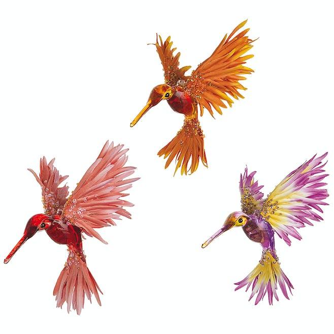 Clips colibri