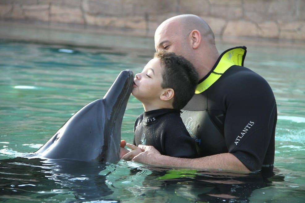 Un bain avec les dauphins pour Vin et son fils