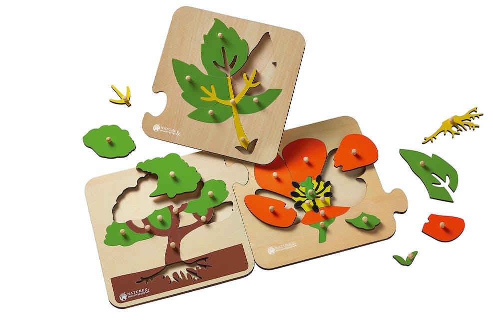 3 puzzles botaniques