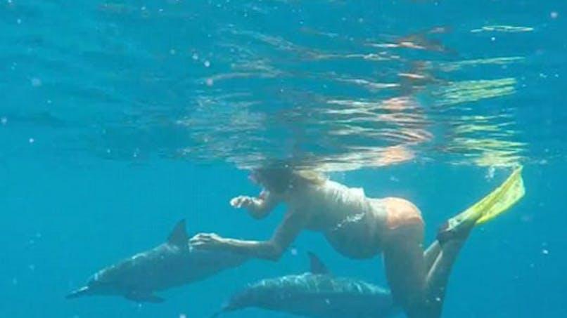 Accouchement : une femme souhaite donner naissance au   milieu des dauphins