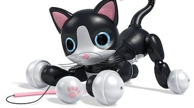 Robot Kitty Zoomer Spin Master