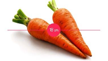 Semaine 19 : une carotte