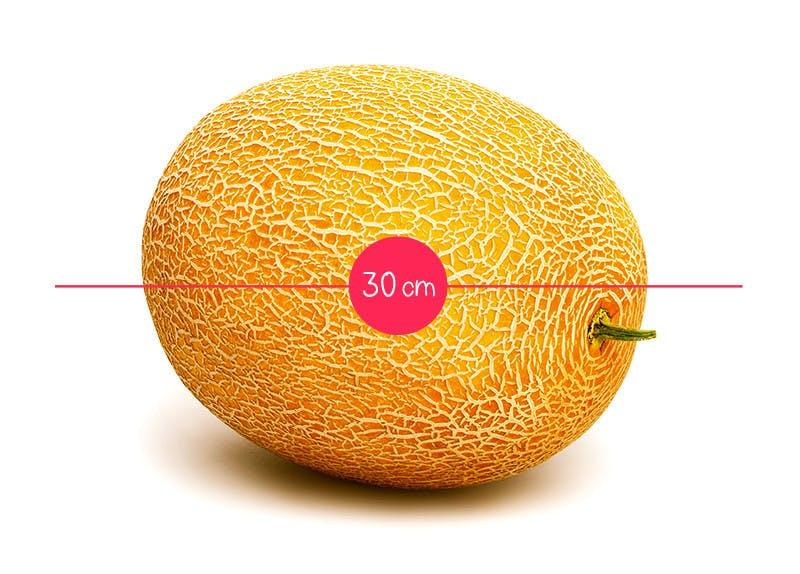 Semaine 31 : un melon d'eau