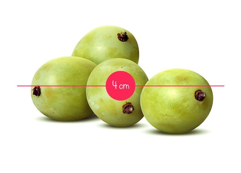 Semaine 8 : un grain de raisin ou une cerise