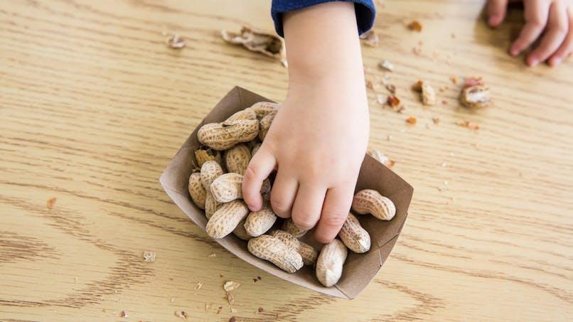 Allergie à l'arachide chez l'enfant: un patch prouve   son efficacité