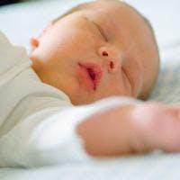 Recherche personne pour câliner des bébés        adoptés
