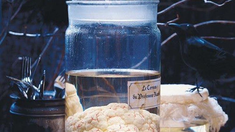 Cerveau en bocal
