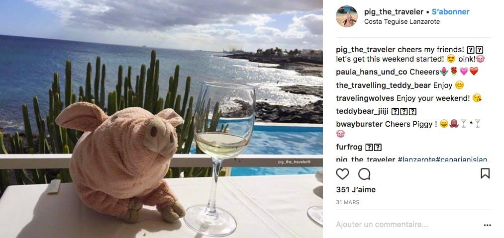 Leslie le cochon voyageur