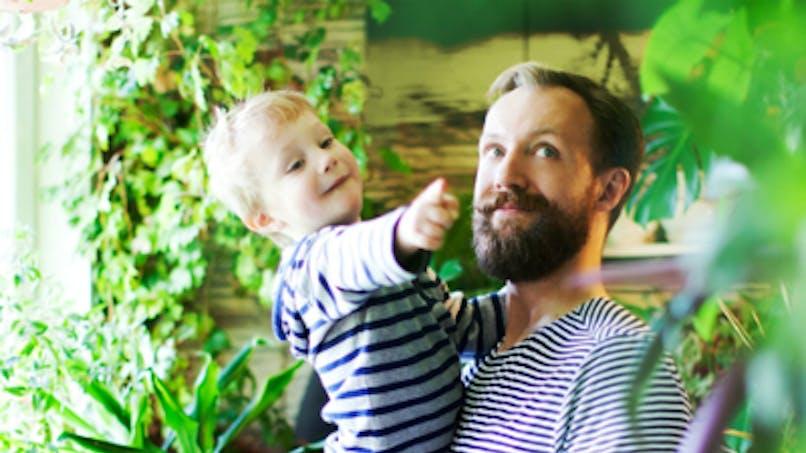 Plantes d'intérieur : gare aux intoxications chez les   enfants