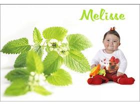 Mélisse