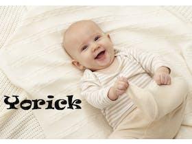 Yorick