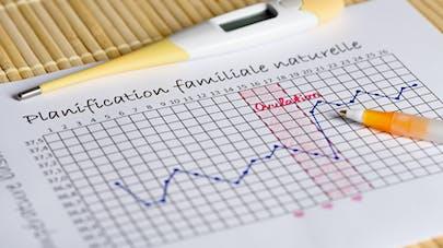 tableau ovulation naturelle