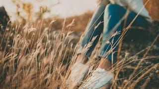 femme assise champ de blé