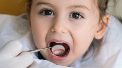 dentbébé