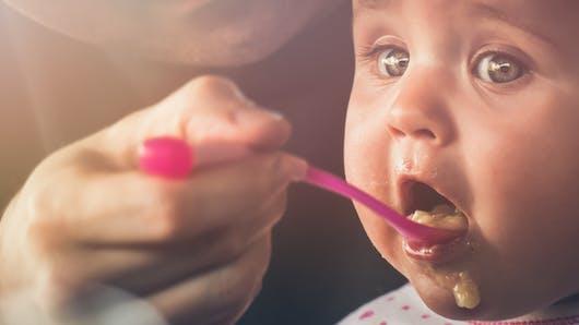 Lait infantile et diversification alimentaire