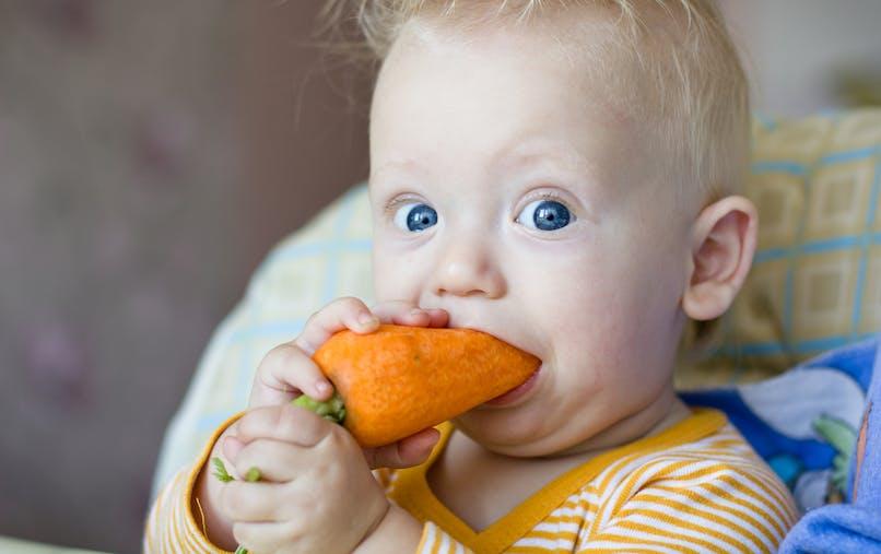 bébé croque dans une carotte