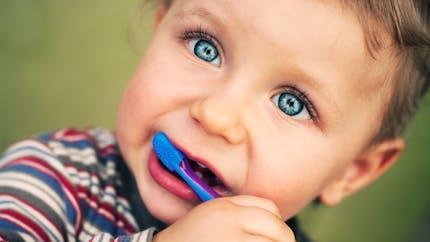 Bébé : à quel âge le brossage des dents ?