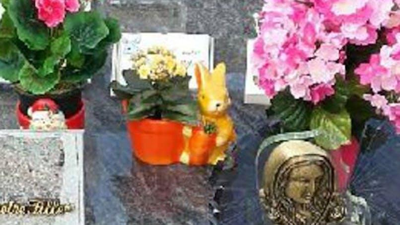 Des parents lancent un appel sur Facebook pour retrouver le lapin volé sur la tombe de leur bébé