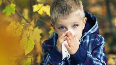 Les allergies respiratoires sévères sont en plein boom, alertent les spécialistes