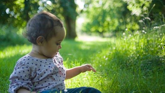 Premiers pas…Dans l'herbe, c'est plus difficile !