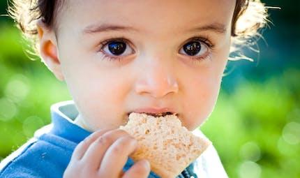 Pourquoi donner du pain à son bébé ?