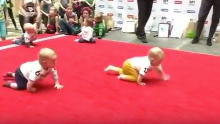 Voici le bébé champion de la course à quatre pattes !