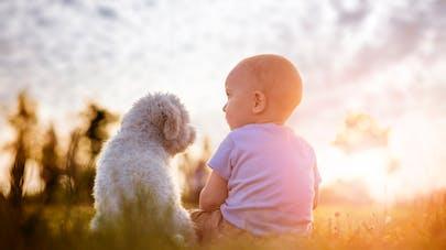 bébé préfére les croquettes pour le chien !
