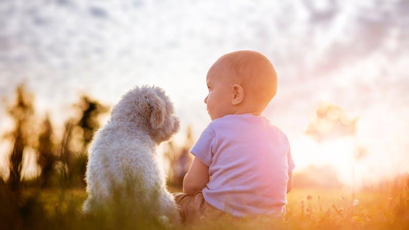 Son bébé préfère la nourriture pour chien !