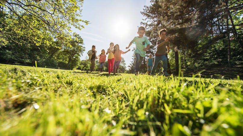 Des enfants découvrent un fœtus dans un parc