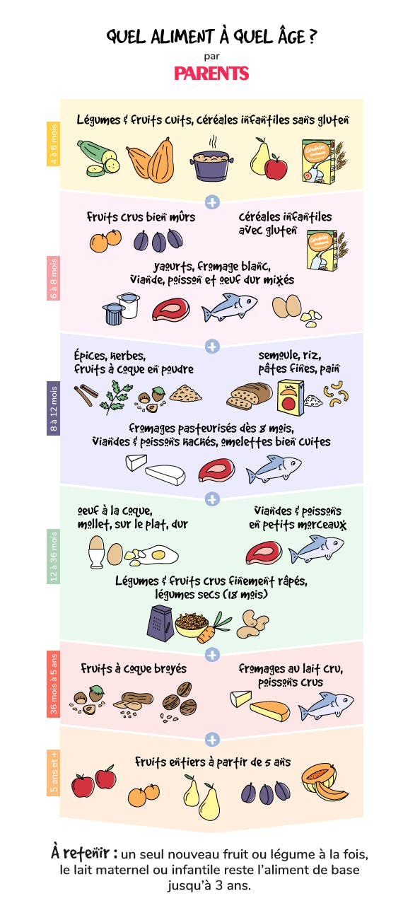 infographie diversification alimentaire
