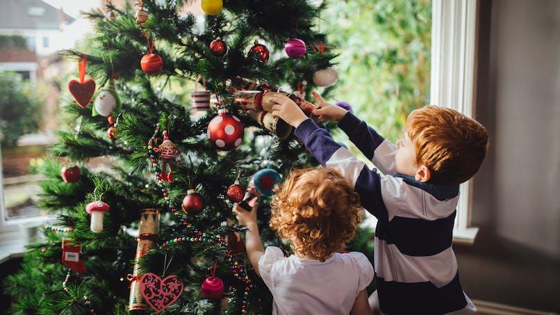 Sapins de Noël: quels sont les goûts des Français?