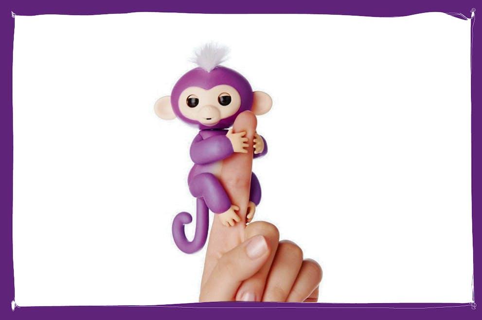 singe violet