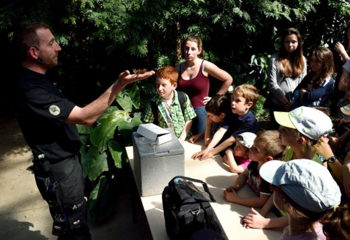 un guide avec des enfants au parc zoologique de Paris