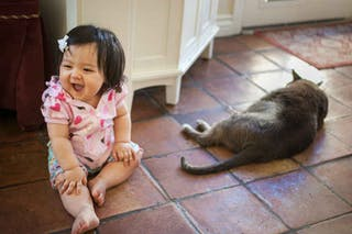 petite fille avec un chat