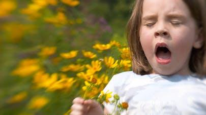 petite fille éternuant en respirant des fleurs des champs