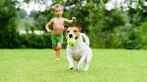 Quel animal pour votre enfant ?