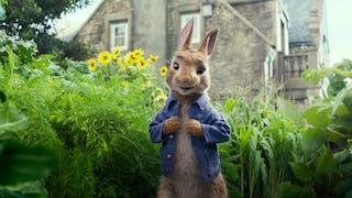 Pierre Lapin, le film familiale à aller voir au cinéma à Pâques.